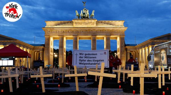 1. Juni in Berlin: VIER PFOTEN Mahnwache für die Opfer des illegalen Welpenhandels. © VIER PFOTEN | Christopher Koch