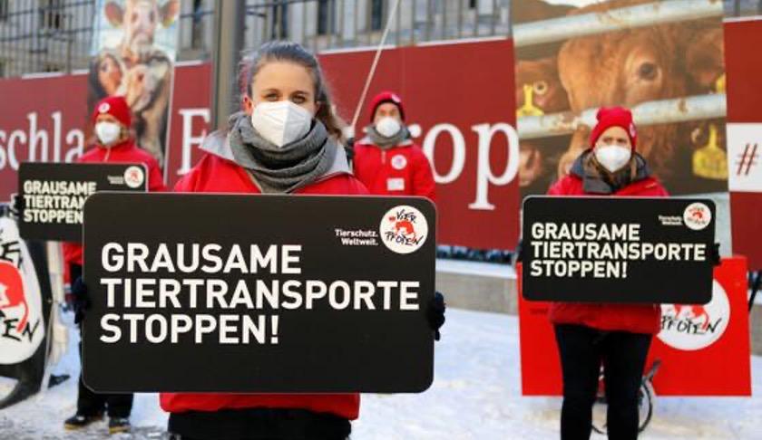 """In diesem Jahr findet die """"Wir haben es satt"""" Demo ohne öffentliche Beteiligung statt."""